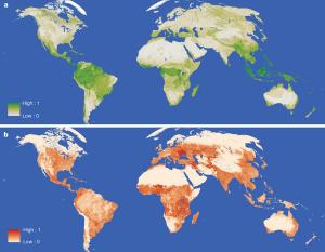 Global zoning plan